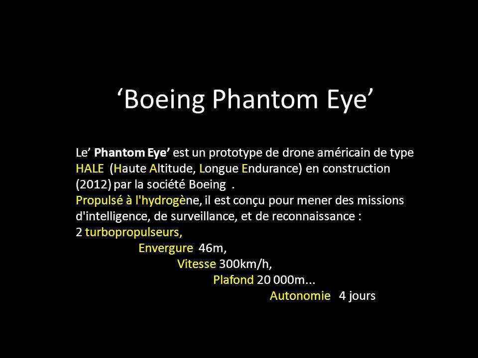 Le Phantom Eye est un prototype de drone américain de type HALE (Haute Altitude, Longue Endurance) en construction (2012) par la société Boeing.