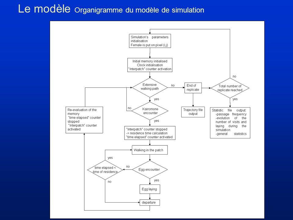 Le modèle Organigramme du modèle de simulation