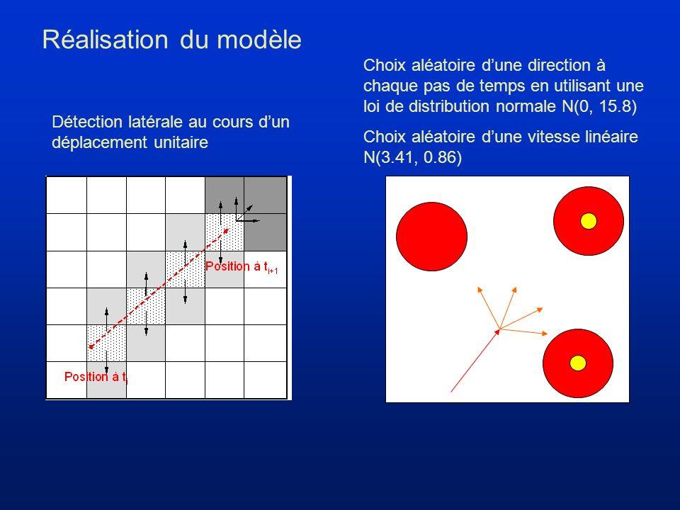 Réalisation du modèle Détection latérale au cours dun déplacement unitaire Choix aléatoire dune direction à chaque pas de temps en utilisant une loi de distribution normale N(0, 15.8) Choix aléatoire dune vitesse linéaire N(3.41, 0.86)