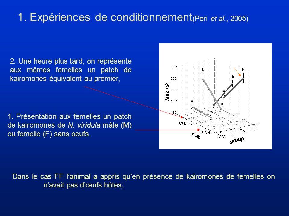 1.Présentation aux femelles un patch de kairomones de N.