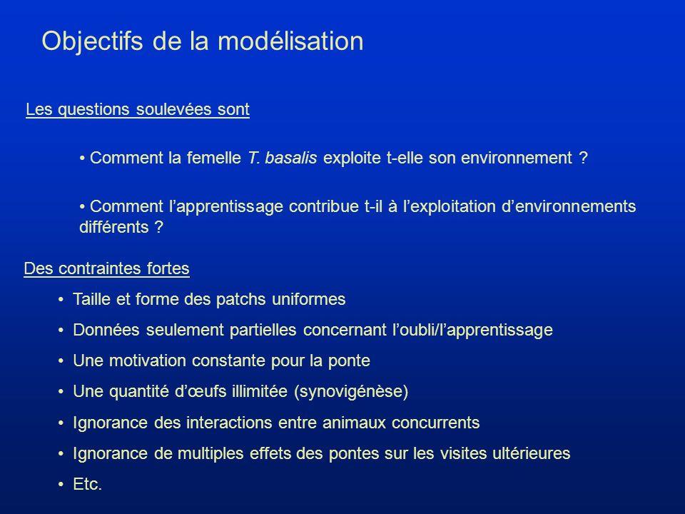 Objectifs de la modélisation Les questions soulevées sont Comment lapprentissage contribue t-il à lexploitation denvironnements différents .