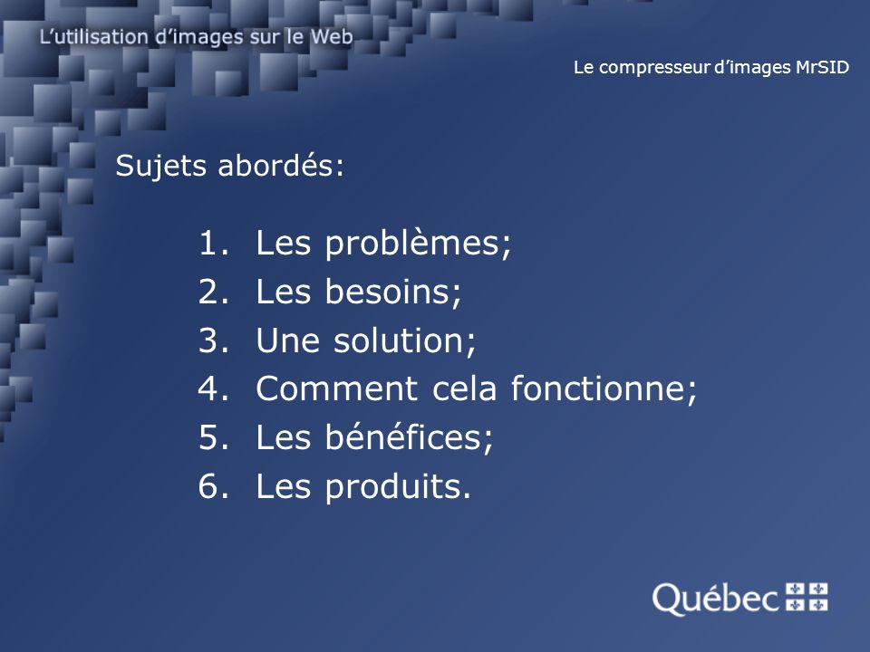 Sujets abordés: 1.Les problèmes; 2.Les besoins; 3.Une solution; 4.Comment cela fonctionne; 5.Les bénéfices; 6.Les produits.