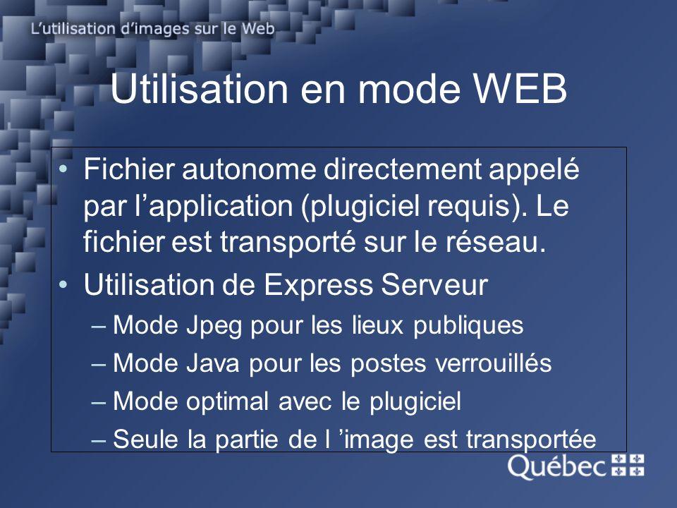 Utilisation en mode WEB Fichier autonome directement appelé par lapplication (plugiciel requis).