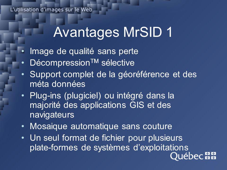 Avantages MrSID 2 Sécure, image non modifiable Rapide, décompression et serveur Web.