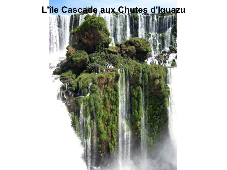 L île Cascade aux Chutes d Iguazu