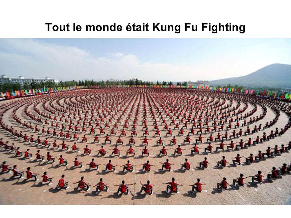 Tout le monde était Kung Fu Fighting