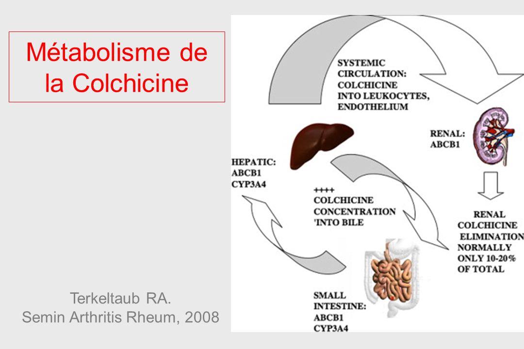 Métabolisme de la Colchicine Terkeltaub RA. Semin Arthritis Rheum, 2008
