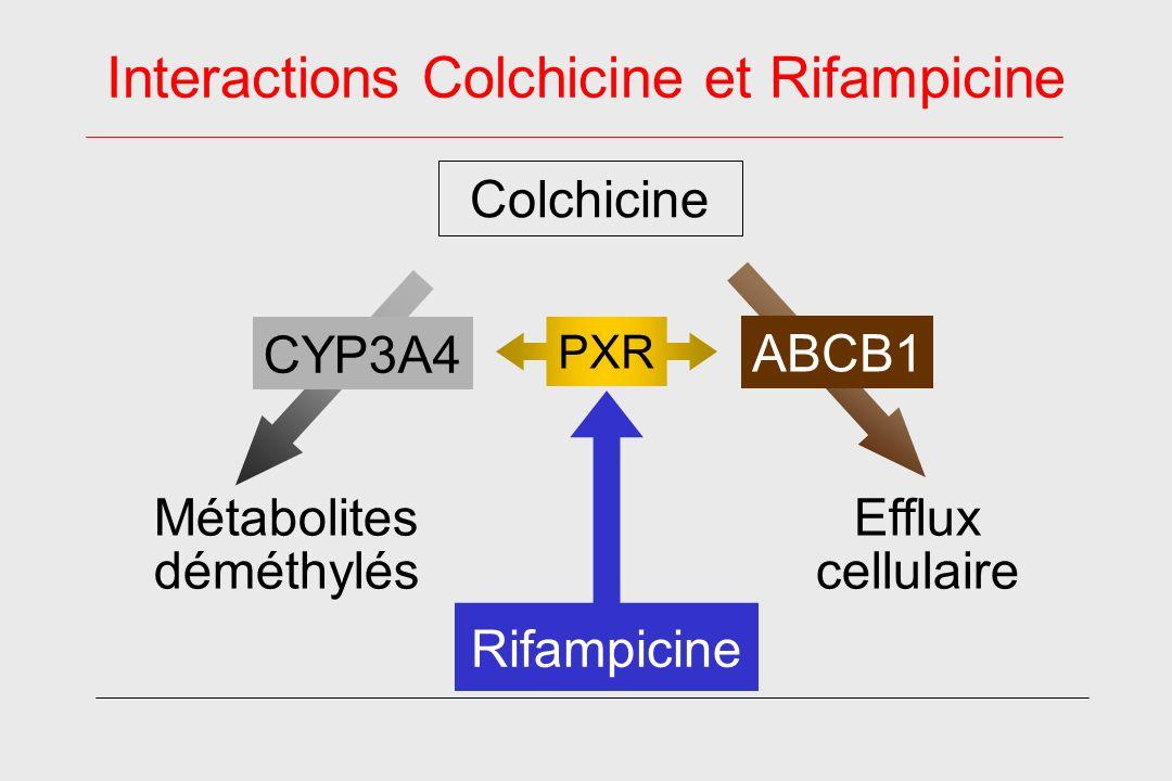 Interactions Colchicine et Rifampicine Métabolites déméthylés CYP3A4 Efflux cellulaire Colchicine PXR Rifampicine ABCB1