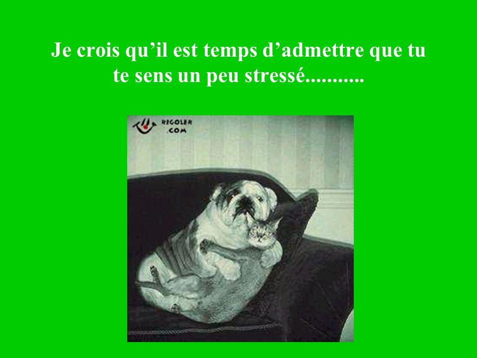 Je crois quil est temps dadmettre que tu te sens un peu stressé...........