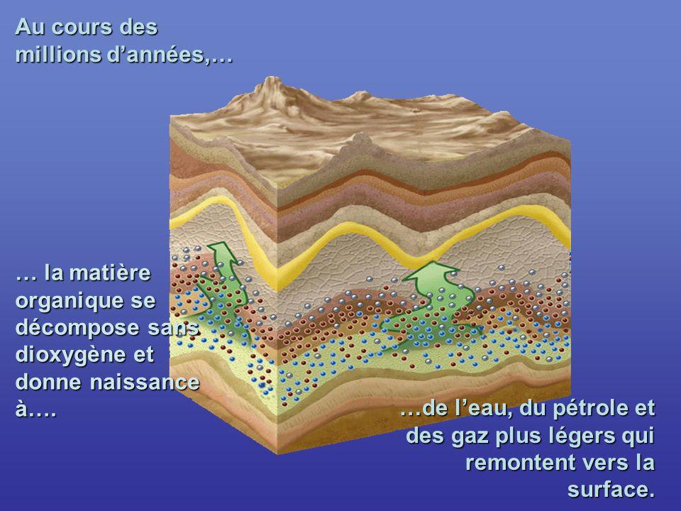 Au cours des millions dannées,… … la matière organique se décompose sans dioxygène et donne naissance à….