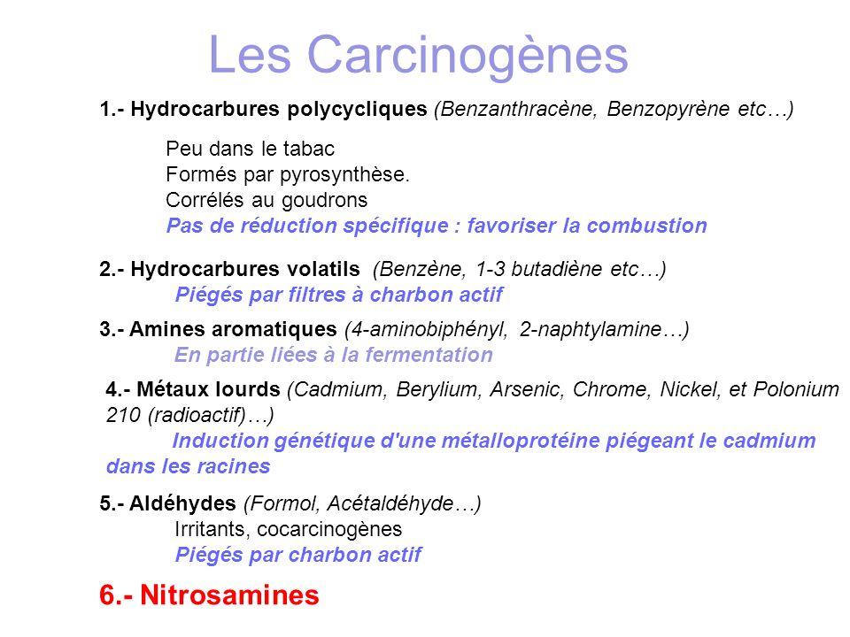 1.- Hydrocarbures polycycliques (Benzanthracène, Benzopyrène etc…) Peu dans le tabac Formés par pyrosynthèse. Corrélés au goudrons Pas de réduction sp