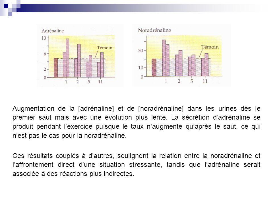 Augmentation de la [adrénaline] et de [noradrénaline] dans les urines dès le premier saut mais avec une évolution plus lente.
