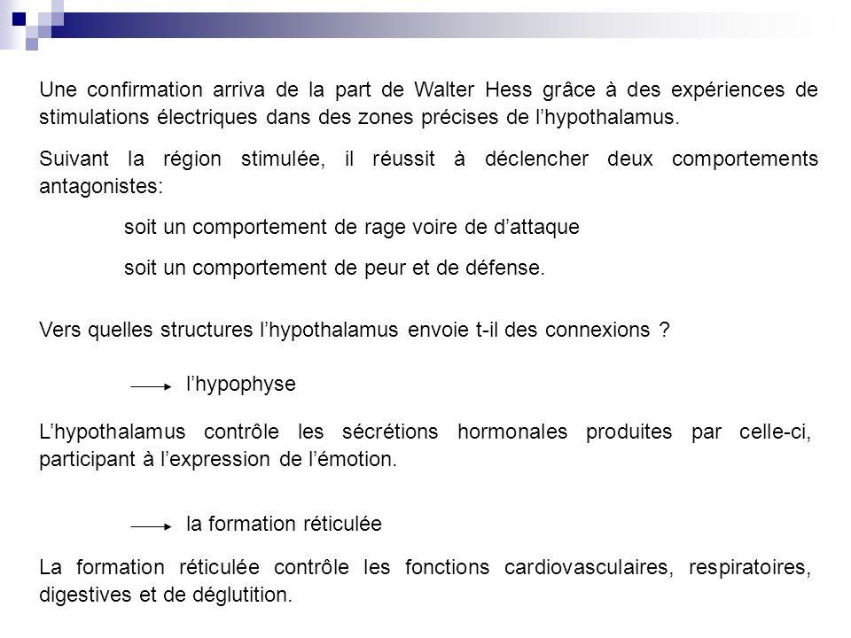 Une confirmation arriva de la part de Walter Hess grâce à des expériences de stimulations électriques dans des zones précises de lhypothalamus.