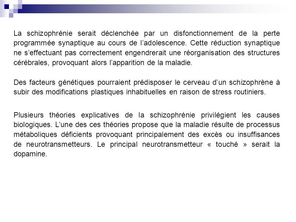 La schizophrénie serait déclenchée par un disfonctionnement de la perte programmée synaptique au cours de ladolescence.