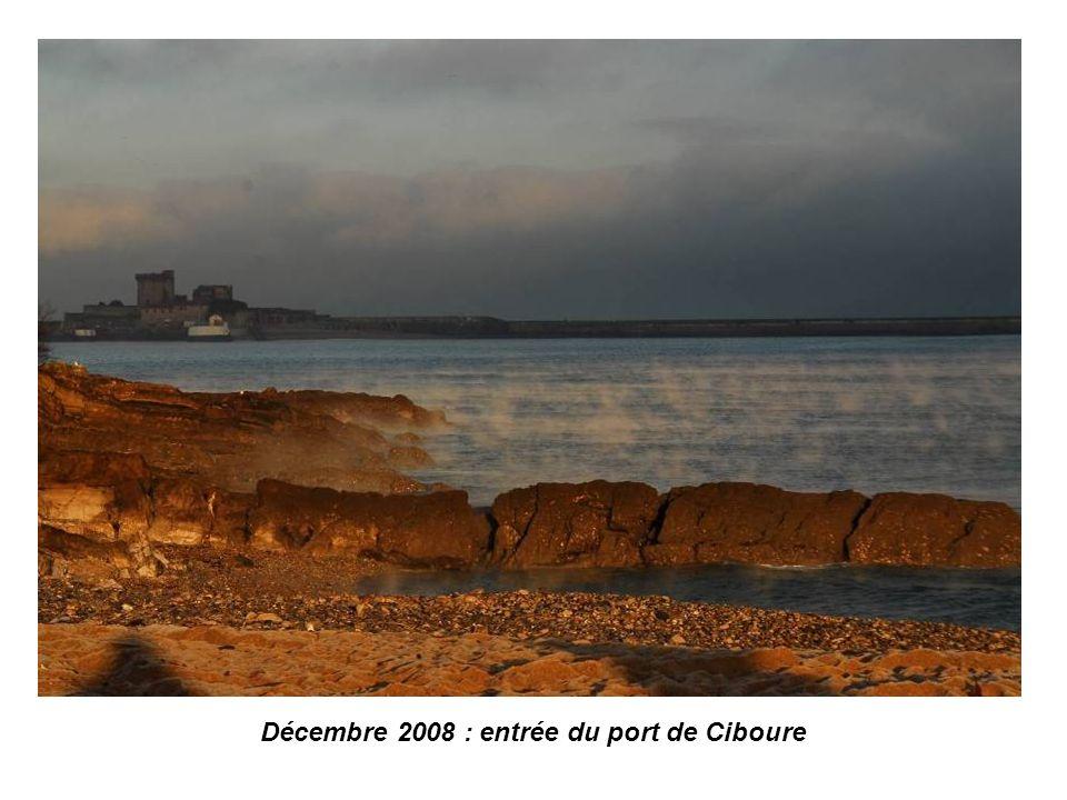 Dans notre petit coin, en ouvrant bien les yeux, sans aller très très loin, parfois cest merveilleux 1 ère partie : le tour de la baie et la Rhune