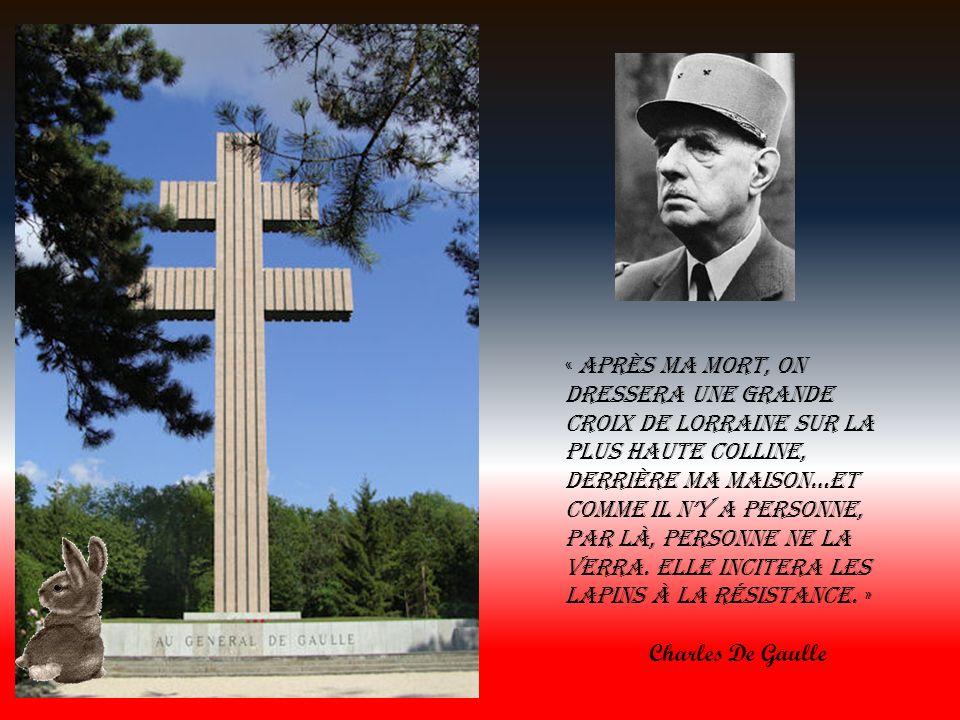 Charles De Gaulle Dans le tumulte des hommes et des événements La solitude était ma tentation maintenant elle est mon amie De quelle autre se contenter lorsque lon a rencontré lhistoire Charles De Gaulle