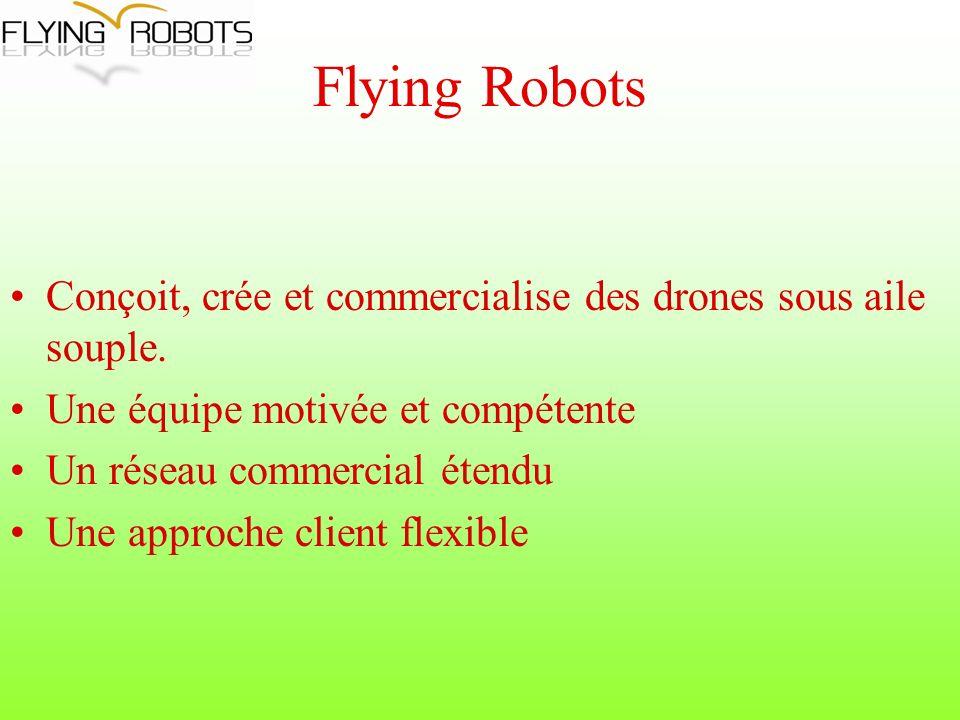 Flying Robots Conçoit, crée et commercialise des drones sous aile souple.