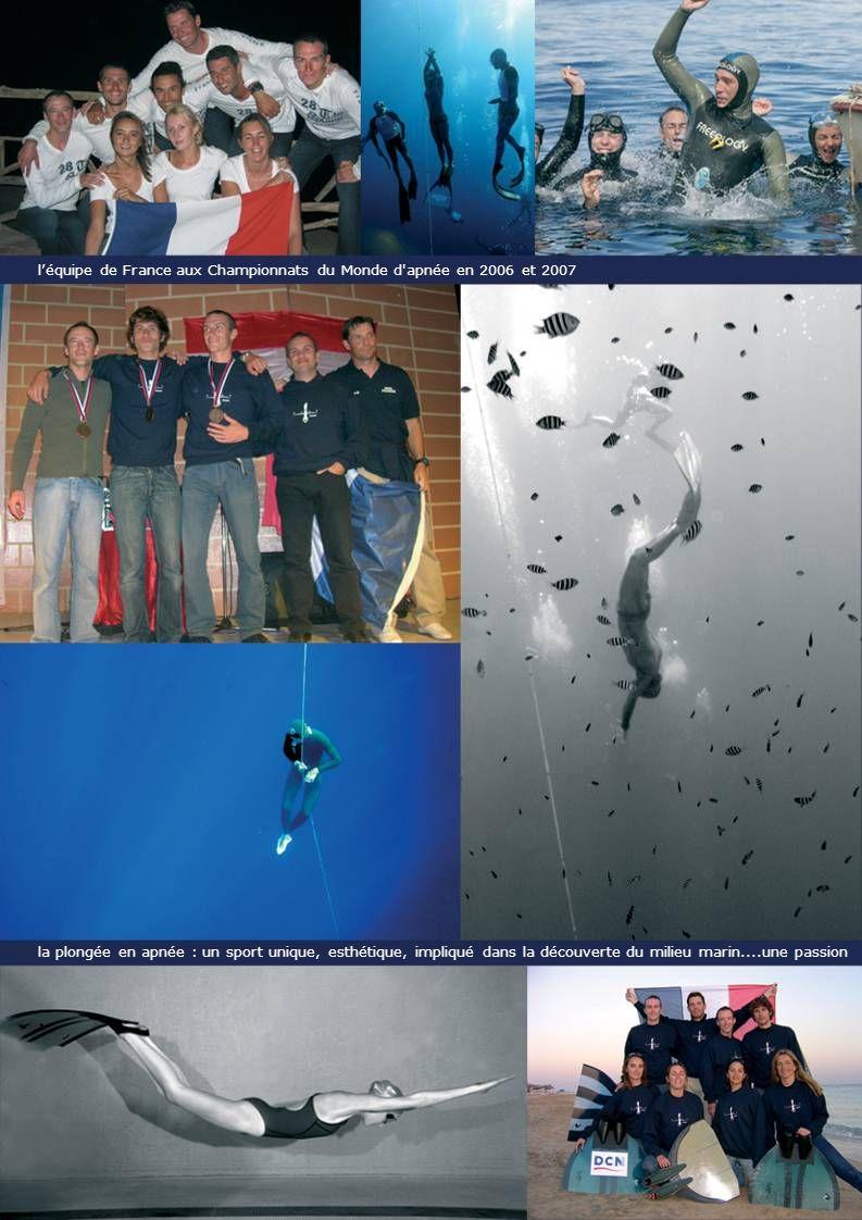 léquipe de France aux Championnats du Monde d apnée en 2006 et 2007 la plongée en apnée : un sport unique, esthétique, impliqué dans la découverte du milieu marin....une passion