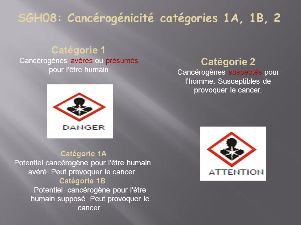 SGH08: Cancérogénicité catégories 1A, 1B, 2 Catégorie 1 Cancérogènes avérés ou présumés pour lêtre humain Catégorie 2 Cancérogènes suspectés pour lhomme.