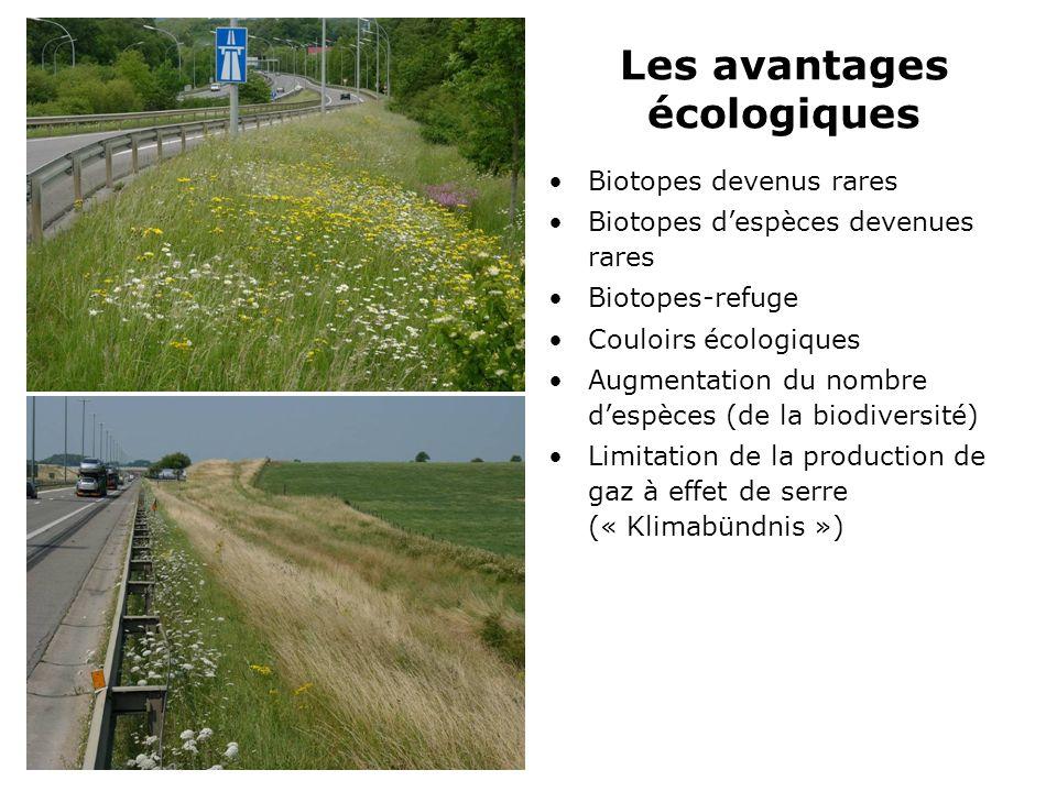 Les avantages écologiques Biotopes devenus rares Biotopes despèces devenues rares Biotopes-refuge Couloirs écologiques Augmentation du nombre despèces