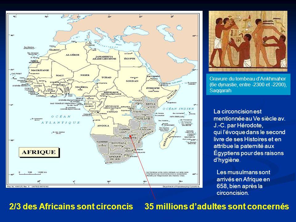 35 millions dadultes sont concernés Gravure du tombeau dAnkhmahor (6e dynastie, entre -2300 et -2200), Saqqarah La circoncision est mentionnée au Ve siècle av.