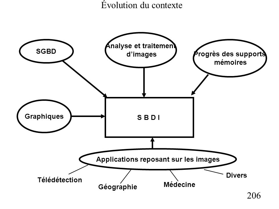 206 Évolution du contexte S B D I SGBD Analyse et traitement dimages Progrès des supports mémoires Graphiques Applications reposant sur les images Télédétection Géographie Médecine Divers