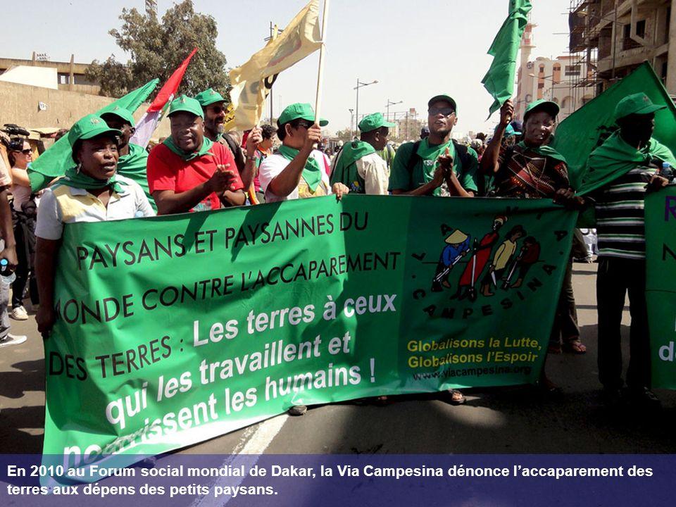 En 2010 au Forum social mondial de Dakar, la Via Campesina dénonce laccaparement des terres aux dépens des petits paysans.