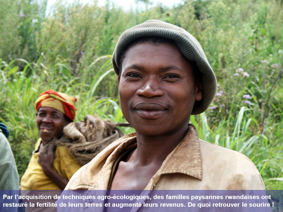Par lacquisition de techniques agro-écologiques, des familles paysannes rwandaises ont restauré la fertilité de leurs terres et augmenté leurs revenus.