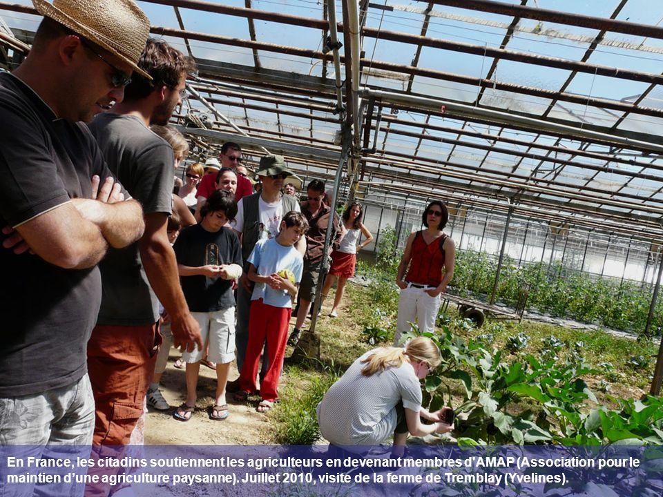 En France, les citadins soutiennent les agriculteurs en devenant membres d AMAP (Association pour le maintien dune agriculture paysanne).
