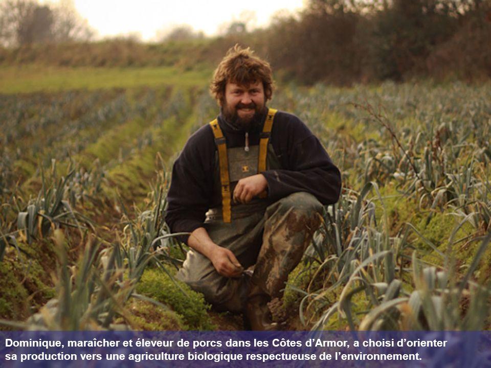 Dominique, maraîcher et éleveur de porcs dans les Côtes dArmor, a choisi dorienter sa production vers une agriculture biologique respectueuse de lenvironnement.