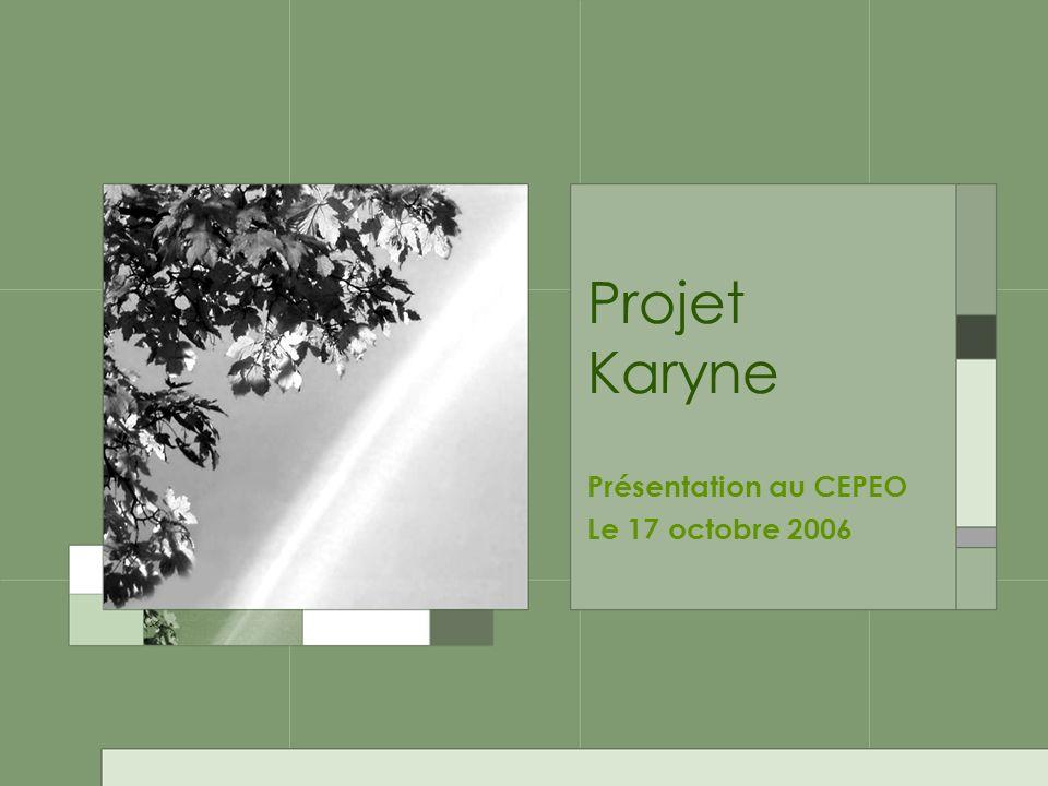 Projet Karyne Présentation au CEPEO Le 17 octobre 2006