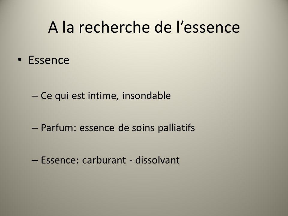 A la recherche de lessence Essence – Ce qui est intime, insondable – Parfum: essence de soins palliatifs – Essence: carburant - dissolvant