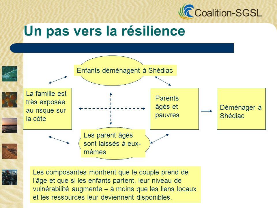 Coalition-SGSL Enfants déménagent à Shédiac La famille est très exposée au risque sur la côte Parents âgés et pauvres Les parent âgés sont laissés à eux- mêmes Déménager à Shédiac Un pas vers la résilience Les composantes montrent que le couple prend de lâge et que si les enfants partent, leur niveau de vulnérabilité augmente – à moins que les liens locaux et les ressources leur deviennent disponibles.