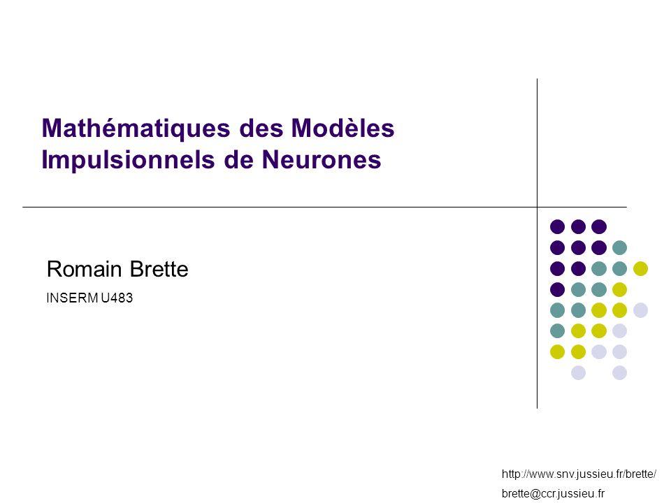 http://www.snv.jussieu.fr/brette/ brette@ccr.jussieu.fr Mathématiques des Modèles Impulsionnels de Neurones Romain Brette INSERM U483