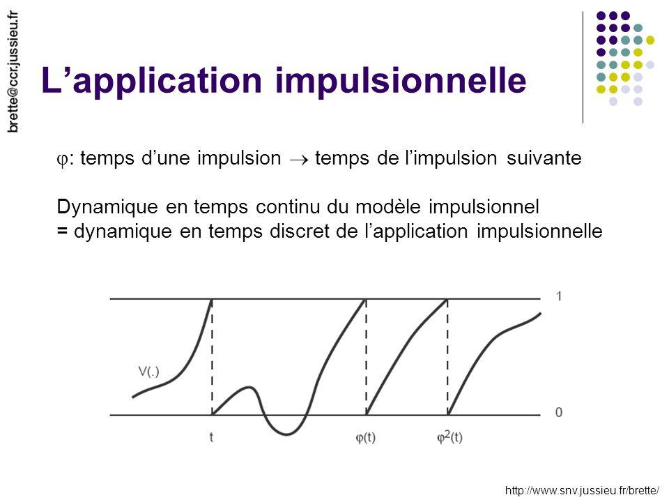 http://www.snv.jussieu.fr/brette/ Lapplication impulsionnelle : temps dune impulsion temps de limpulsion suivante Dynamique en temps continu du modèle impulsionnel = dynamique en temps discret de lapplication impulsionnelle