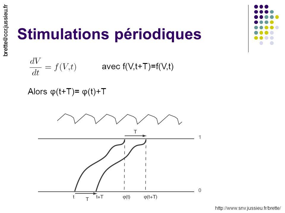 http://www.snv.jussieu.fr/brette/ Stimulations périodiques avec f(V,t+T)=f(V,t) Alors φ(t+T)= φ(t)+T