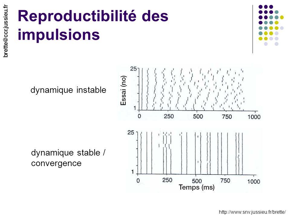 http://www.snv.jussieu.fr/brette/ Reproductibilité des impulsions dynamique instable dynamique stable / convergence