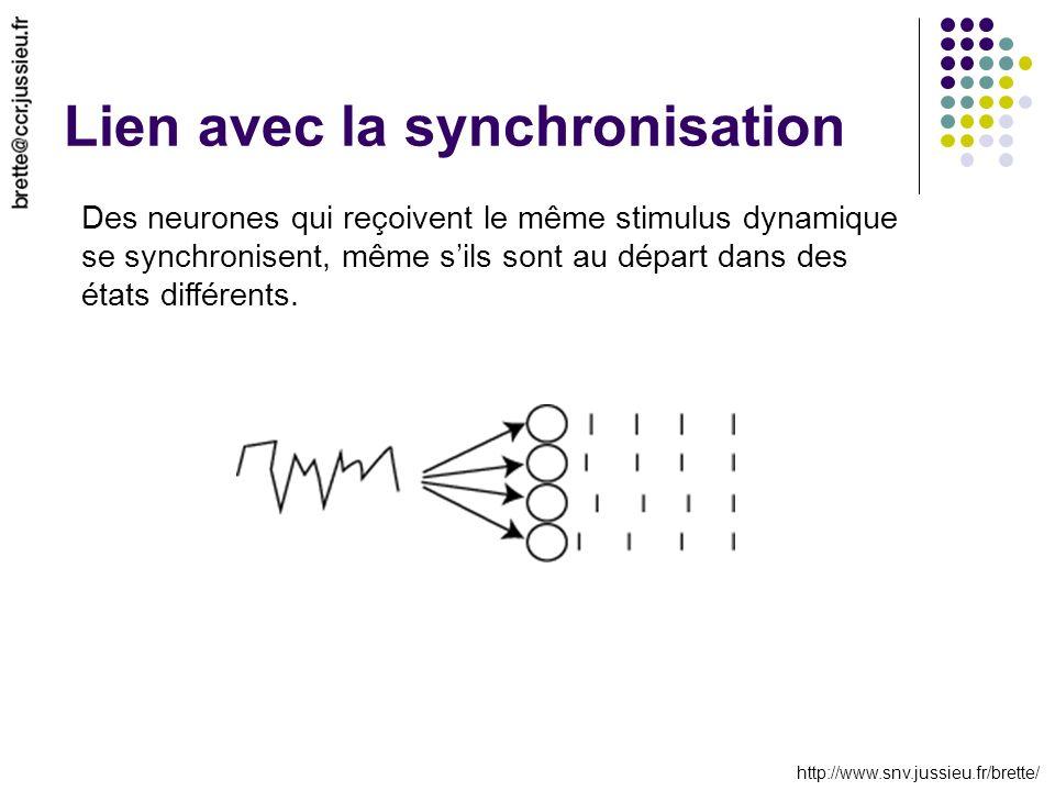 http://www.snv.jussieu.fr/brette/ Lien avec la synchronisation Des neurones qui reçoivent le même stimulus dynamique se synchronisent, même sils sont au départ dans des états différents.