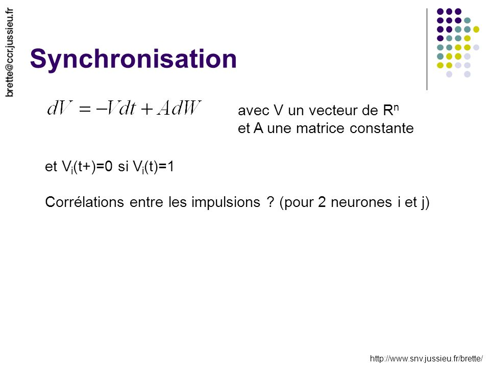 http://www.snv.jussieu.fr/brette/ Synchronisation avec V un vecteur de R n et A une matrice constante et V i (t+)=0 si V i (t)=1 Corrélations entre les impulsions .