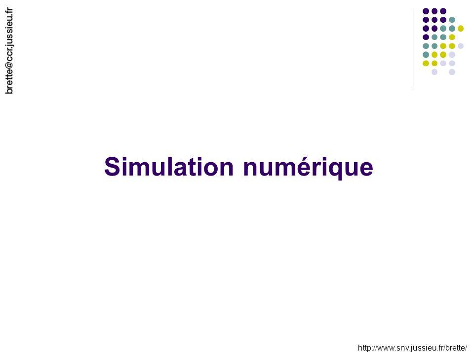 http://www.snv.jussieu.fr/brette/ Simulation numérique