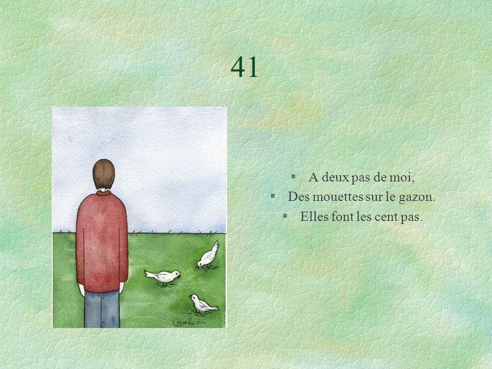 41 §A deux pas de moi, §Des mouettes sur le gazon. §Elles font les cent pas.