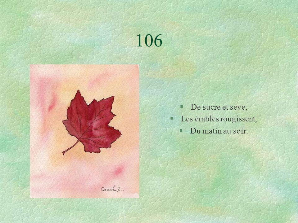 106 §De sucre et sève, §Les érables rougissent, §Du matin au soir.