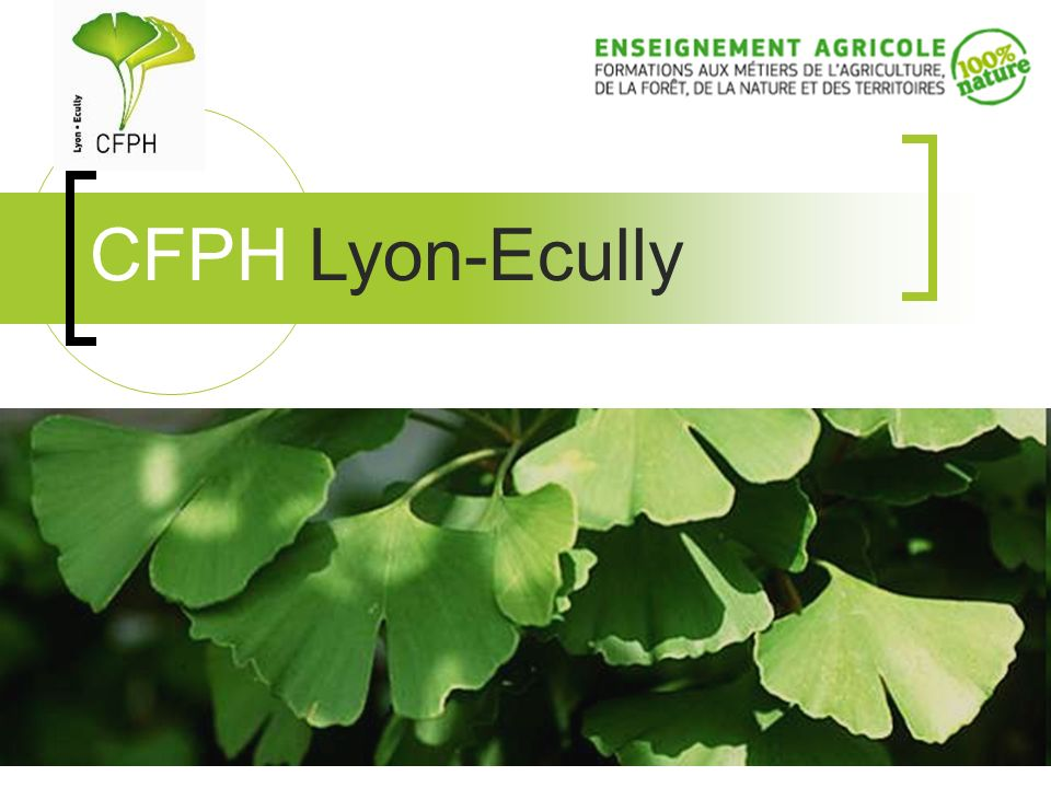 CFPH Lyon-Ecully