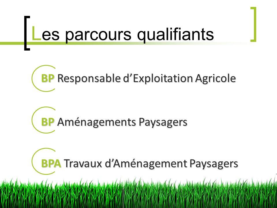 L es parcours qualifiants BPResponsable dExploitation Agricole BP Responsable dExploitation Agricole BPAménagements Paysagers BP Aménagements Paysagers BPATravaux dAménagement Paysagers BPA Travaux dAménagement Paysagers
