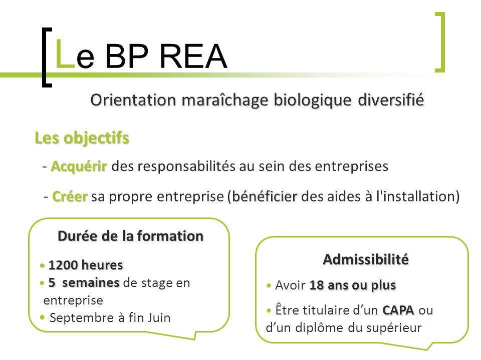 L e BP REA Les objectifs - A AA Acquérir des responsabilités au sein des entreprises - C CC Créer sa propre entreprise (bénéficier des aides à l installation) Durée de la formation 1200 heures 1200 heures 5 semaines 5 semaines de stage en ----- -entreprise Septembre à fin Juin Admissibilité 18 ans ou plus Avoir 18 ans ou plus CAPA Être titulaire dun CAPA ou ---- dun diplôme du supérieur Orientation maraîchage biologique diversifié