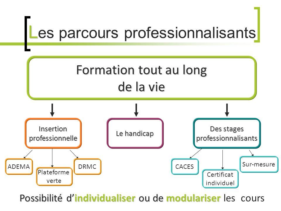 L L es parcours professionnalisants Possibilité dindividualiser ou de modulariser Possibilité dindividualiser ou de modulariser les cours Formation to