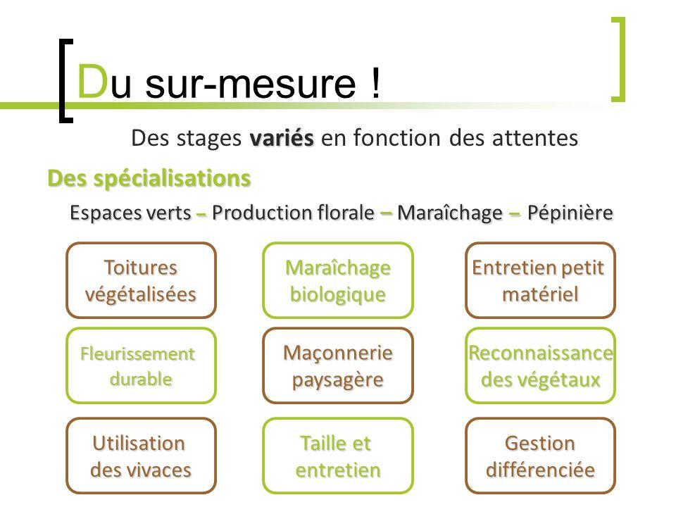 D u sur-mesure ! variés Des stages variés en fonction des attentes Des spécialisations Espaces verts –Production florale – Maraîchage –Pépinière Toitu