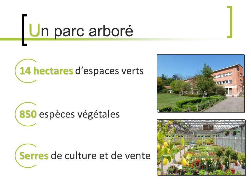 U U n parc arboré 14 hectares 14 hectares despaces verts 850 850 espèces végétales Serres Serres de culture et de vente