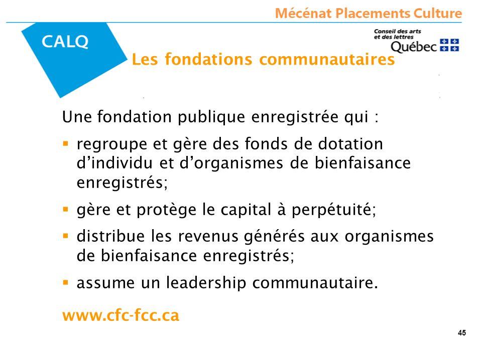 Une fondation publique enregistrée qui : regroupe et gère des fonds de dotation dindividu et dorganismes de bienfaisance enregistrés; gère et protège