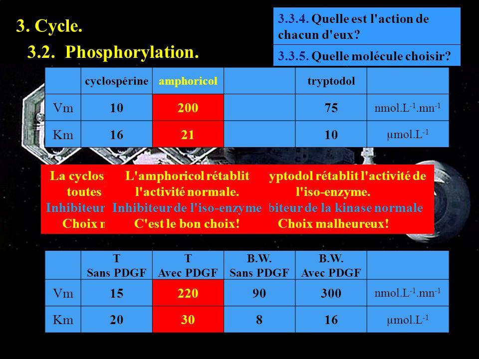 3.3.4 3. Cycle. 3.2. Phosphorylation. 3.3.4. Quelle est l'action de chacun d'eux? La cyclospérine agit sur toutes les kinases. Inhibiteur non spécifiq